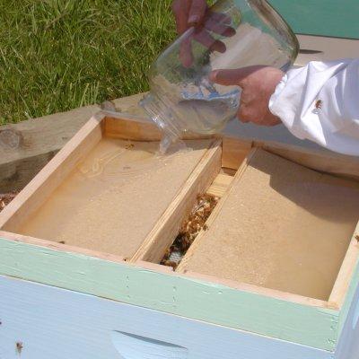 Кормушка для пчел из рамки своими руками